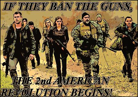 2nd Revolution_cartoon